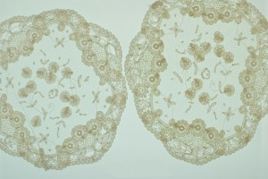 lace plate-mats