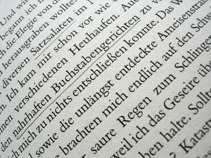 »nahrhafte Buchstabengerichte«