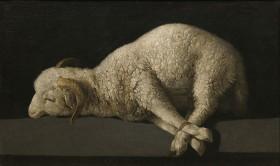 Öl-Gemälde eines Schafs mit zusammengebundenen Läufen