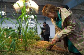Eine Frau setzt eine Gartenschaufel in einem der Beetplateaus des Gartens der Diaspora an.