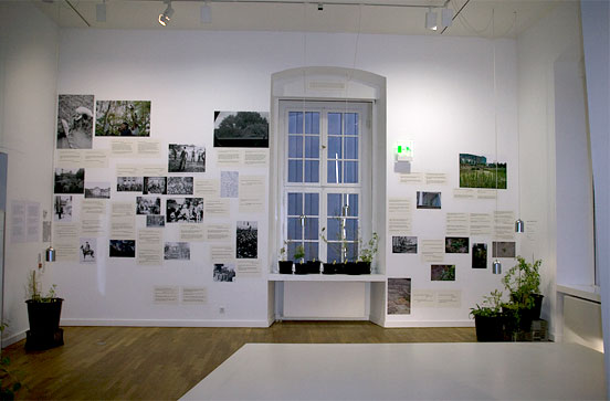 potted plants, above them photos and texts mounted on the wall