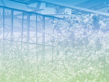 Grafik in Blau-Grün-Tönen: Sommerliche Bäume vor der Fassade des Glashofs im Jüdischen Museum Berlin