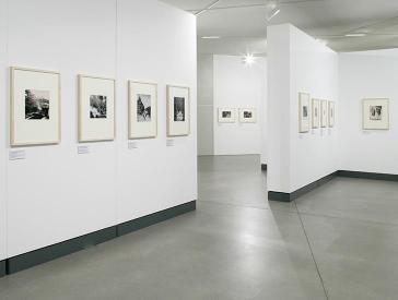 Ausstellungswände mit gerahmten Fotografien