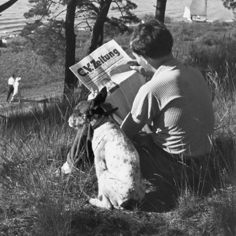 Eine Frau sitzt im Gras und liest Zeitung, daneben sitzt ein Hund