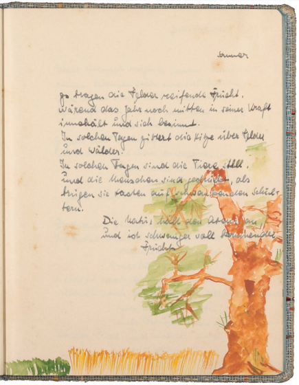 Text handwritten in ink above a color drawing of a tree and a field of gran
