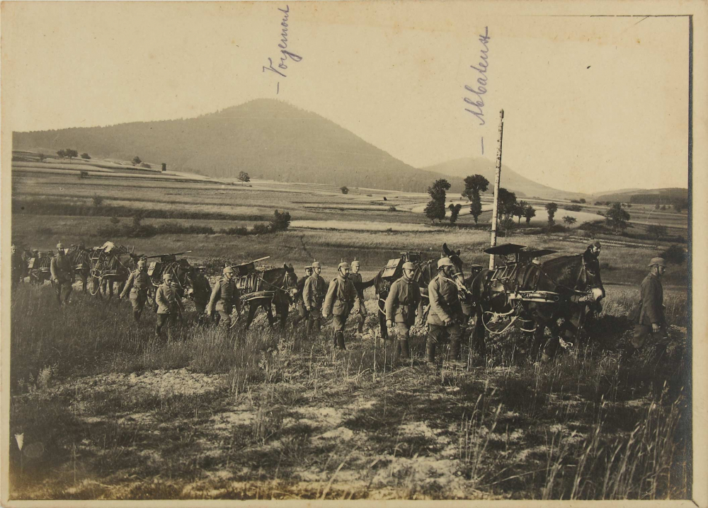 Black-and-white photograph: A line of soldiers with mules marching through a plain, hills in the background