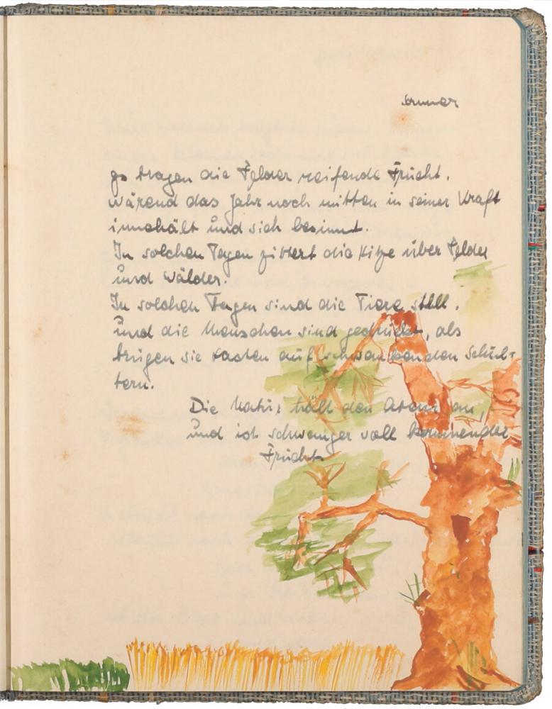 handschriftlicher Text, mit Tinte geschrieben, darunter eine farbige Zeichnung von einem Baum mit Getreidefeld