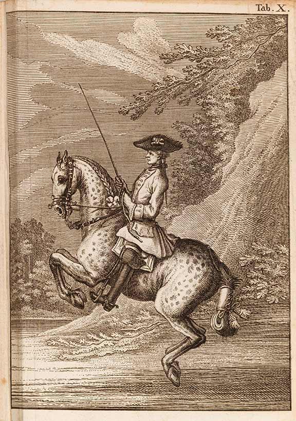 Zeichnung eines adlig gekleideten Reiters auf einem sich vorne aufbäumenden Pferd
