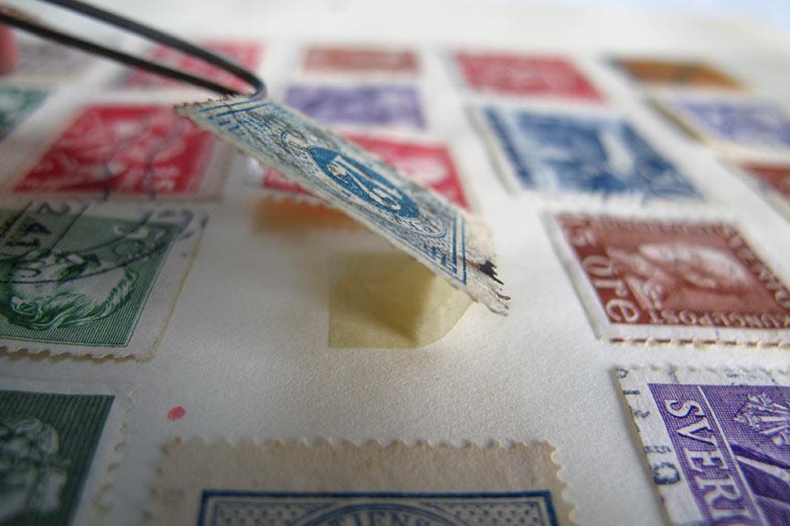 Pinzette hebt Briefmarke in einem Album an