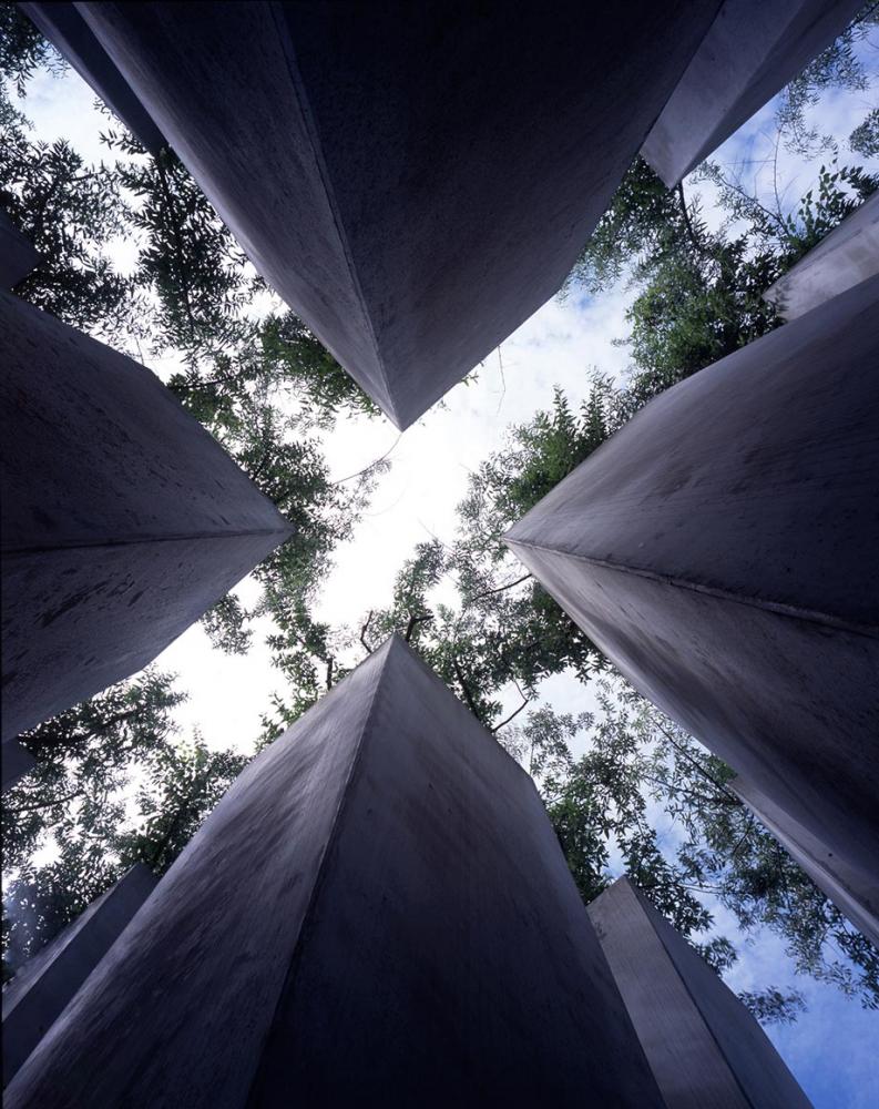 Blick nach oben im <cite>Garten des Exils</cite>