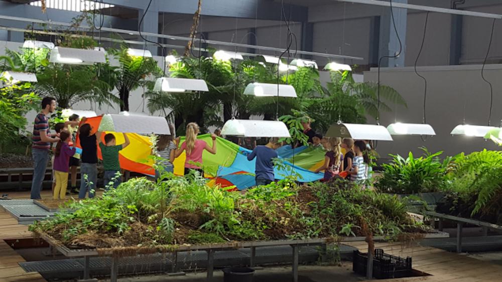 Kinder spielen mit Schwungtuch in einem Indoor-Garten