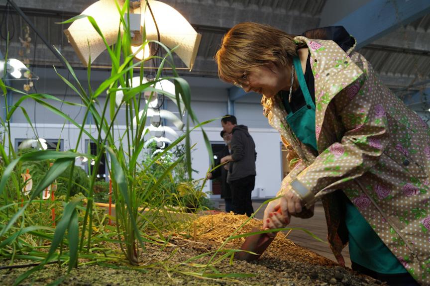Frau arbeitet an Hochbeet in einem Indoor-Garten