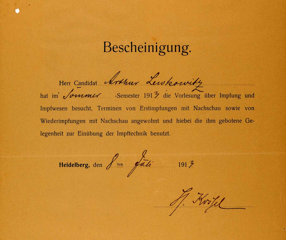 Printed form from Ruprecht Karl University of Heidelberg, completed by hand in ink, for the lecture on vaccines and immunization in the summer semester of 1913.