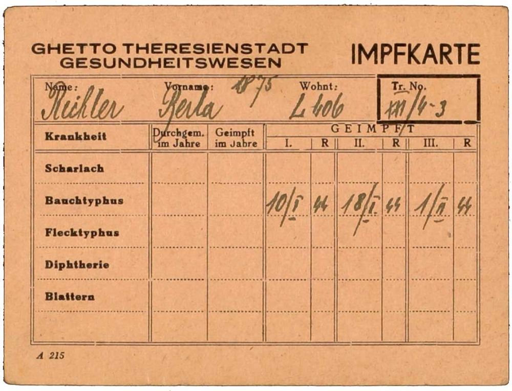 Vaccine certificate for Berta Richter: Theresienstadt ghetto, printed form, filled out by hand, Theresienstadt, 1 Feb 1944