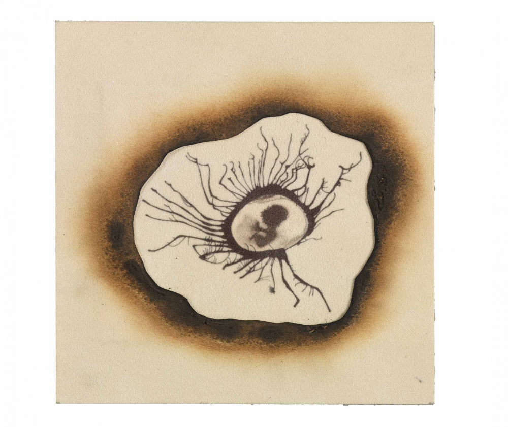 Ink drawing of an human embryo figure encircled by a ring of burnt paper