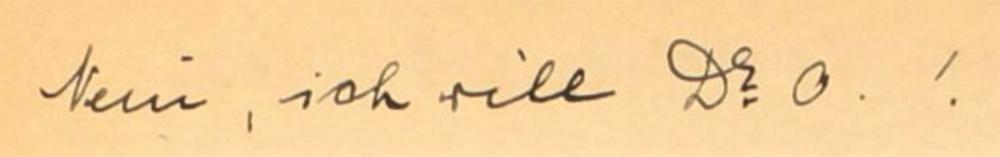 """Foto des handschriftlichen Tagebucheintrags """"Ich will Dr. O!"""""""