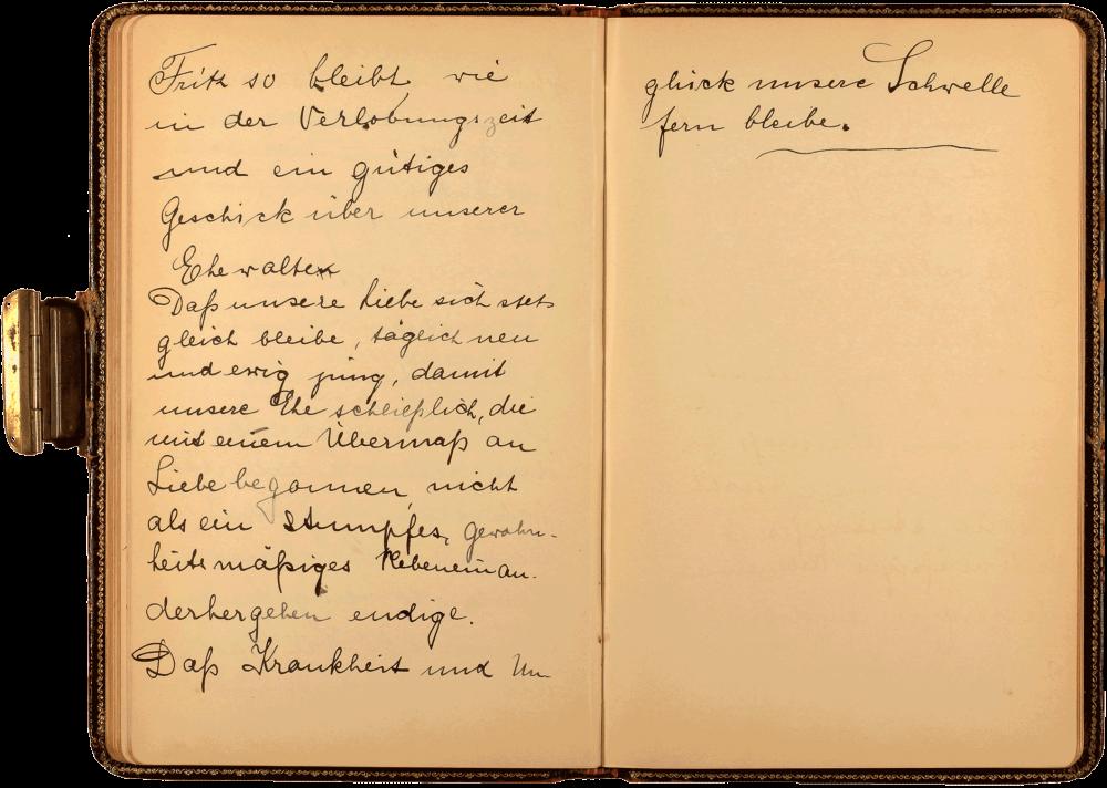 Aufgeklappte Tagebuchseite, die linke Seite und der obere Teil der rechten Seite sind bedeckt mit in schwarzer Tinte geschriebenem handschriftlichem Text.