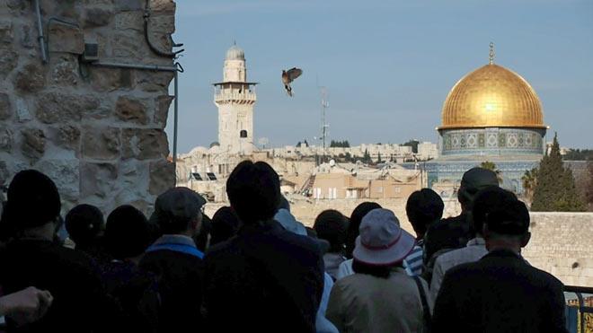 Eine Gruppe Menschen steht in der jerusalemer Altstadt, den Blick in Richtung einer Taube im Himmel gerichtet.