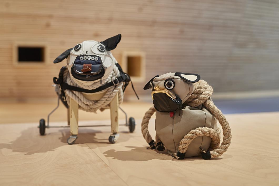 Zwei kleine Hunde als Ausstellungstiere in der Kinderwelt Anoha