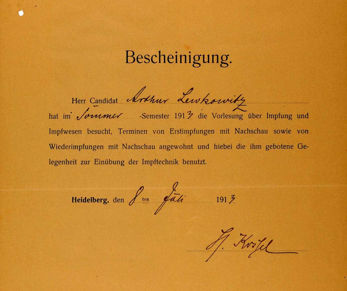 Vordruck der Ruprecht-Karls-Universität Heidelberg, handschriftlich mit Tinte ausgefüllt, für die Vorlesung über Impfungen und Impfwesen im Sommersemester 1913