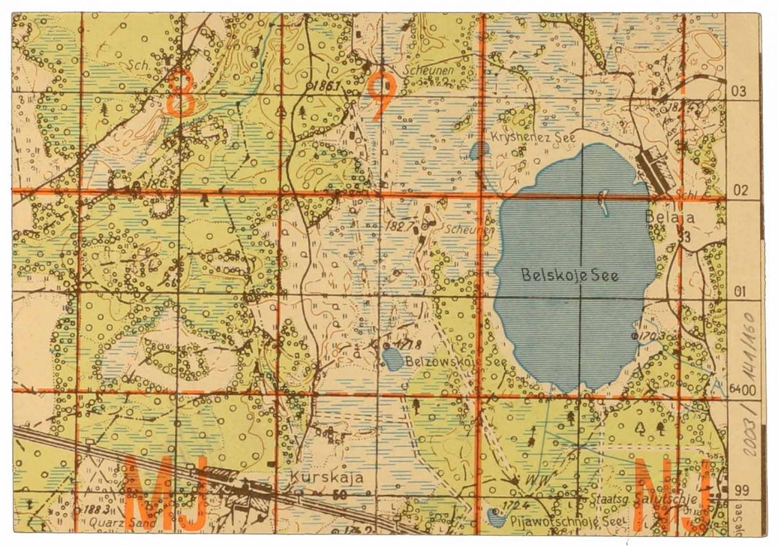 Landkartenausschnitt, auf dem u.a. der Belskoje See abgebildet ist