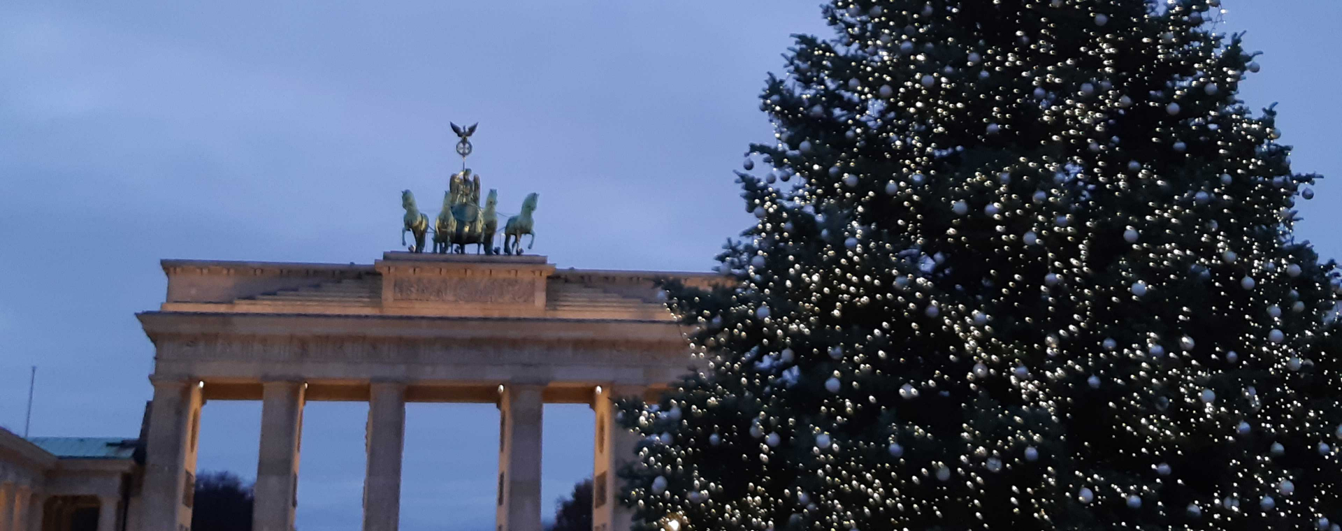 Christmas tree on Pariser Platz with the illuminated Brandenburg Gate in the background