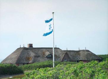 Israelische Fahne auf einem reetgedeckten Dach