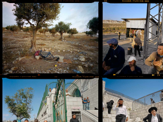 Extract from a contact sheet with four photos of Jerusalem, only one of which can be seen in full: Someone sleeps on cardboard and wrapped in a blanket under an olive tree.