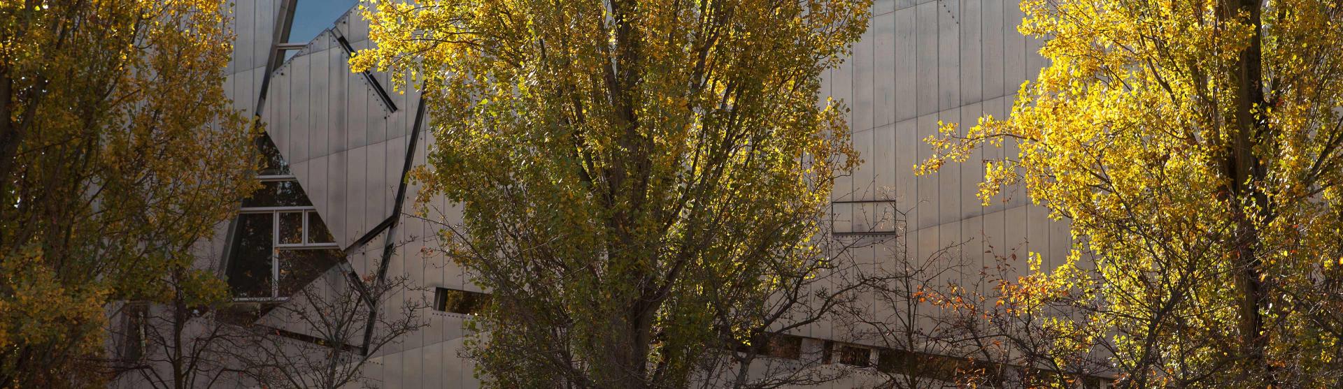 Bäume vor dem Libeskind-Bau