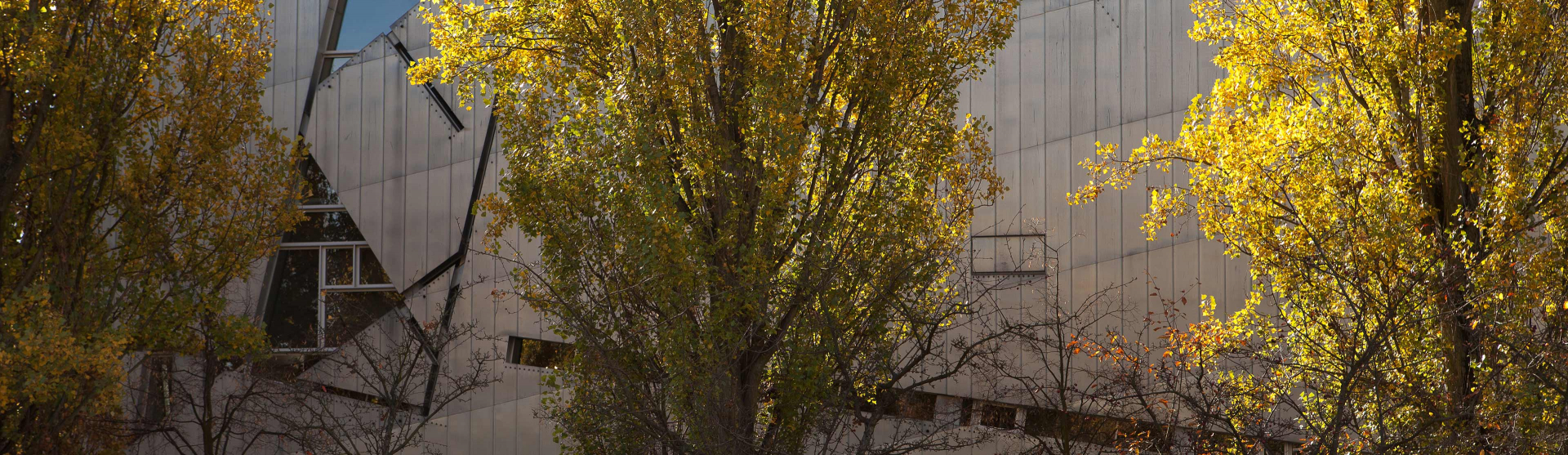 Trees in front of the Libeskind Building