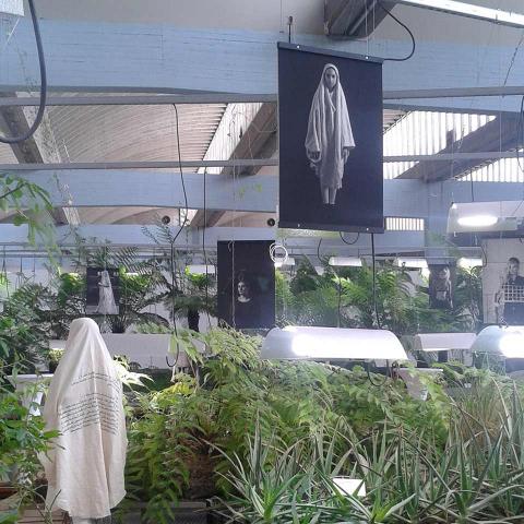 A peek at the exhibition in the Diaspora Garden